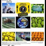 Cartel Jornadas Salud Alimentación y Medio Ambiente