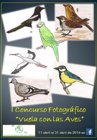 concurso_aves_2016